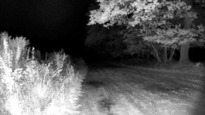 Das Bild zeigt den Bildeindruck bei Nacht von einer PTZ Überwachungskamera