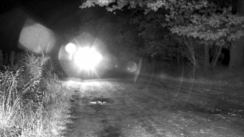 Das Bild zeigt Videoüberwachung mit Gegenlichtkompensation